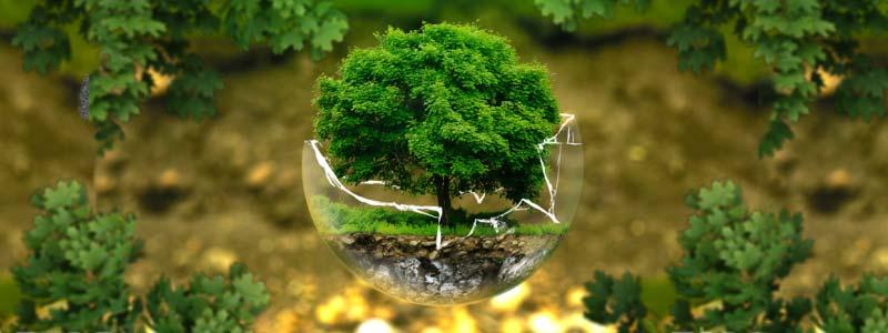 Cálculo huella ambiental